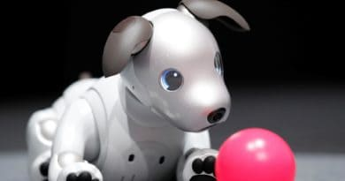 sony-aibo-robot-dog-Techmigi.com